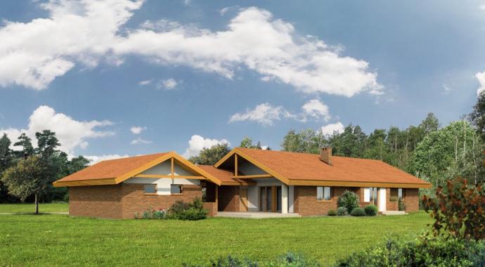 WM 11aL - Projekty domów